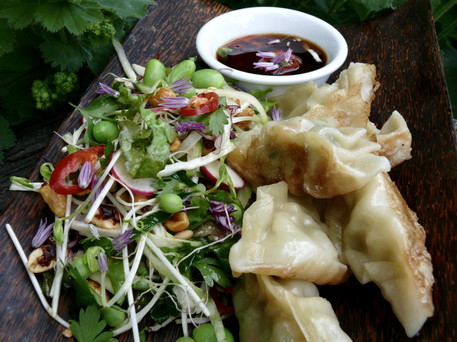 potstickers and crunchy asian salad