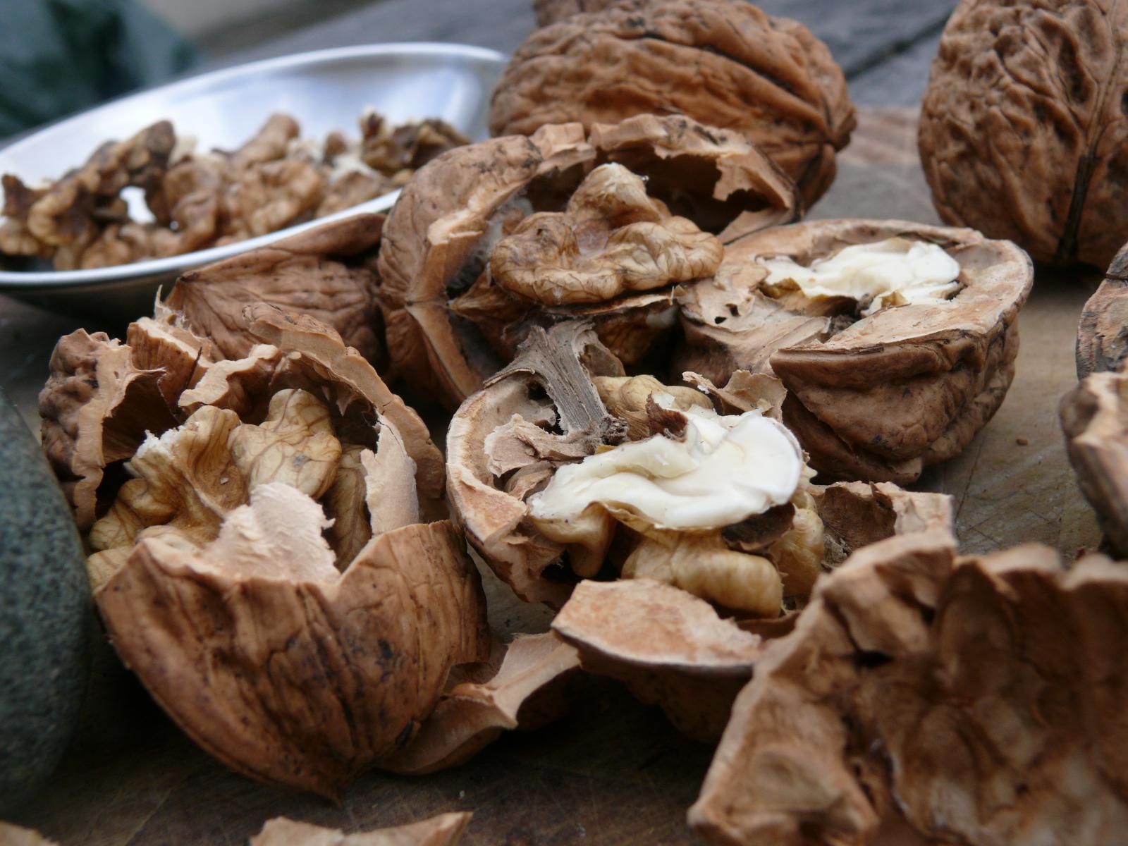 walnuts for muhamrra