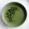 spring green vegetable soup