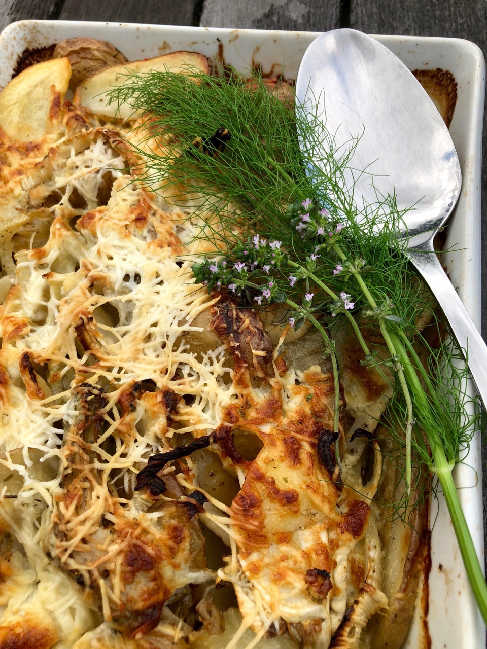 potato fennel artichoke gratin