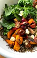 End of Summer Tomato Pumpkin Basil and Lentil Salad
